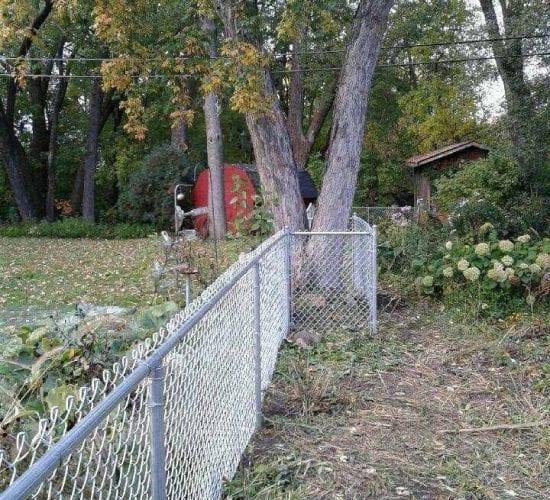4 Galvanized Chain Link Fence Around Tree