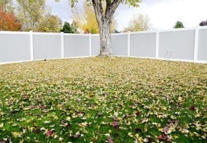 Privacy Fence Ideas (large)