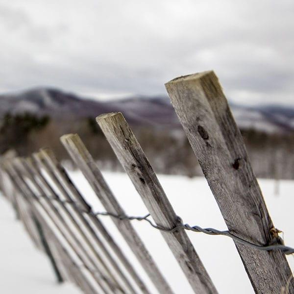 Wooden Fence Winterization