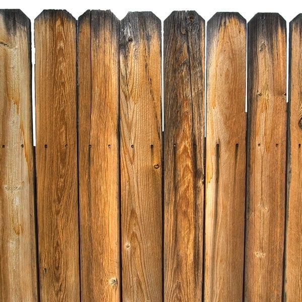 Why Wood Isn't Good