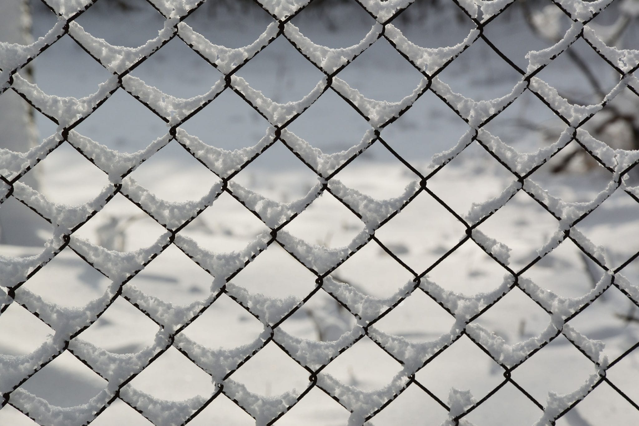 Chain Link Fence Winter
